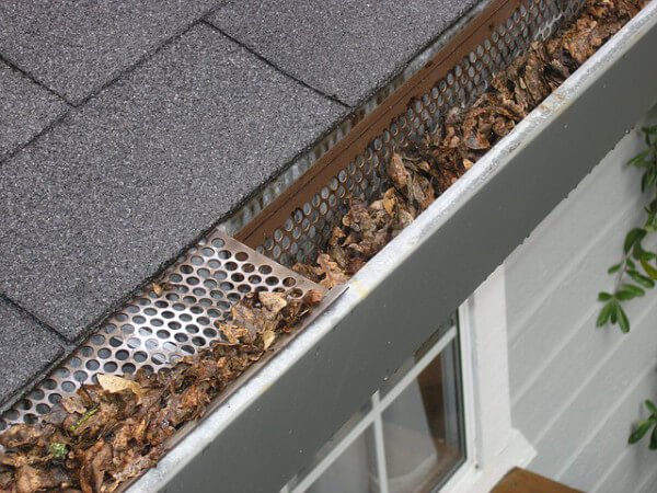 leaf guard in gutter